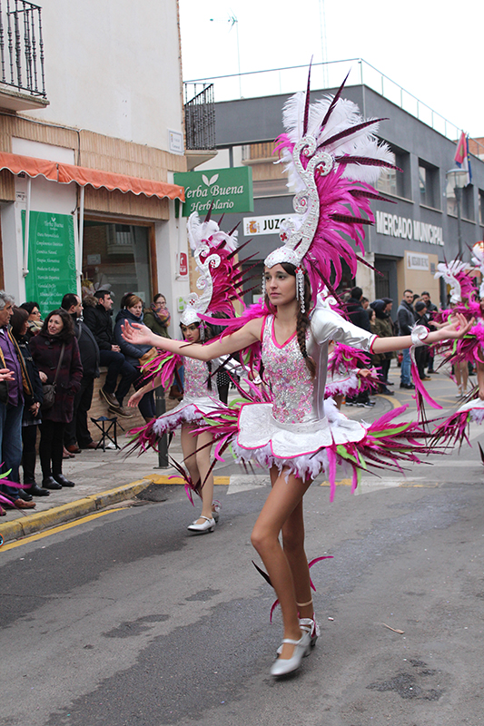 carnaval-miguelturra-carrozas-2017