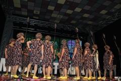 carnaval-miguelturra-chirigotas-2019