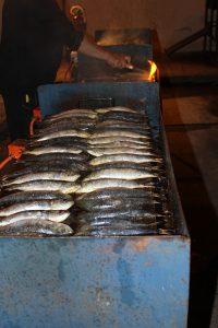 carnaval-miguelturra-entierro-sardina