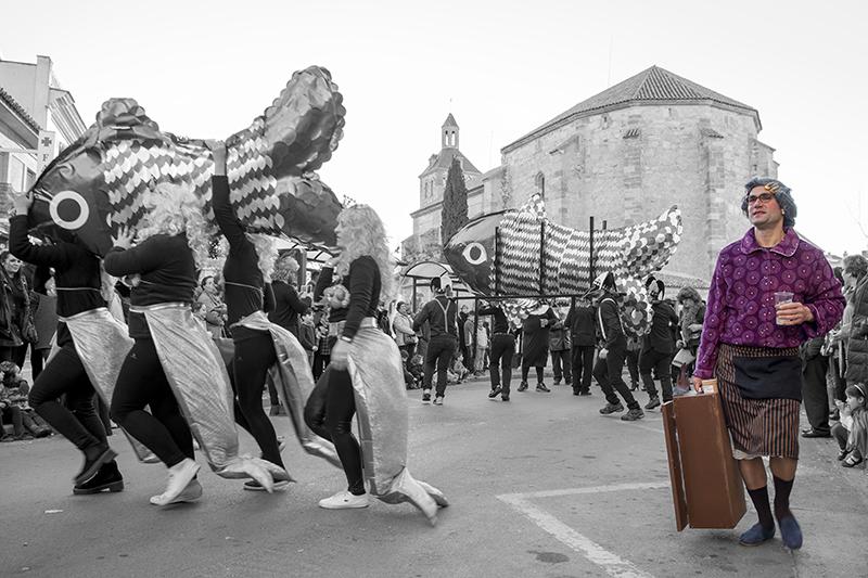 carnaval-miguelturra-1-premio-fotografia 2017