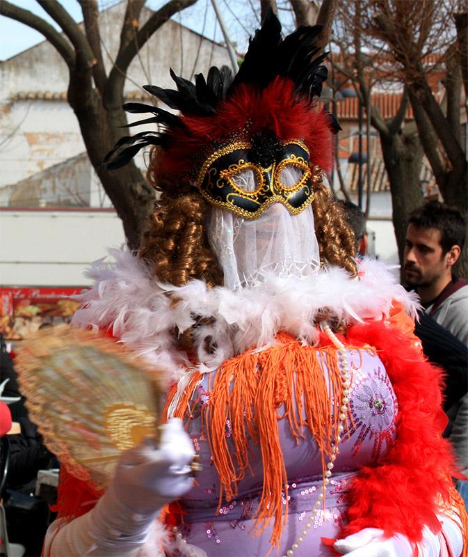 carnaval-miguelturra-3-premio-fotografia 2012