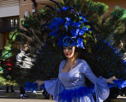 carnaval-miguelturra-desfile-domingo-piñata-2018